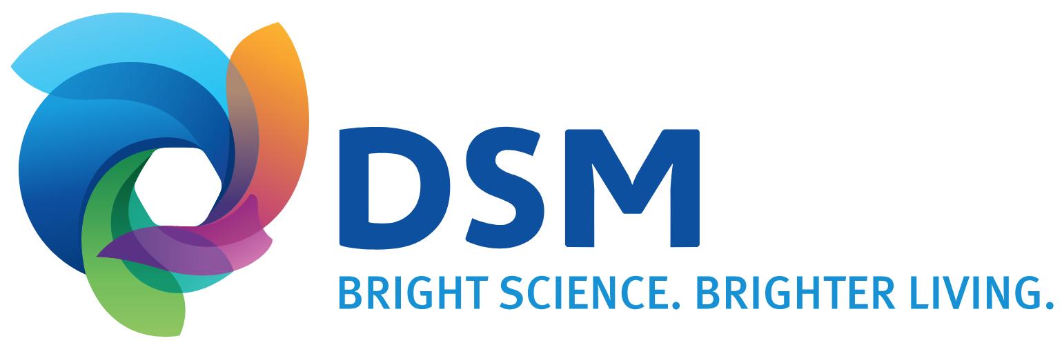 Logo da DSM